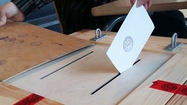Pienpuolueet pärjäsivät kuntavaaleissa aiempaa paremmin