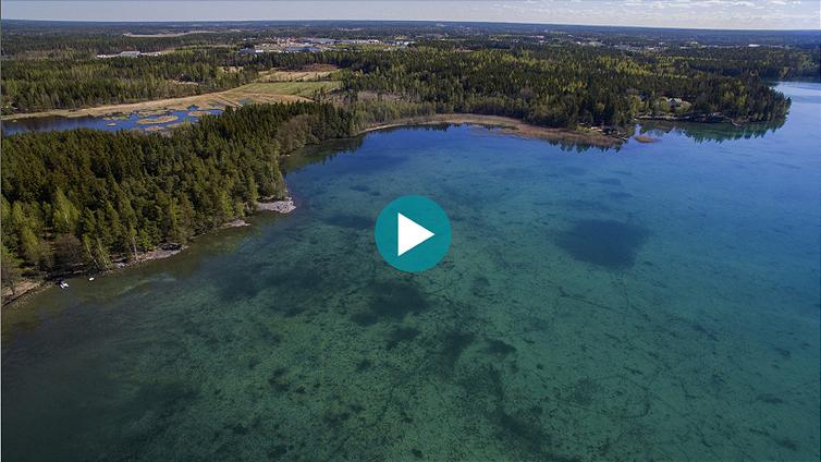 Rehevöitynyt Littoistenjärvi puhdistettiin kemikaaleilla – nyt vesi helmeilee turkoosina