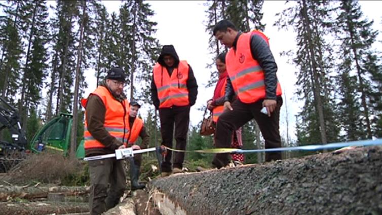 Nepalin metsätuntijat tulivat opintomatkalle Pohjois-Savoon
