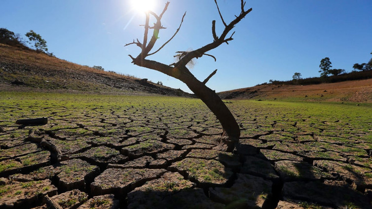 Suomalainen huippututkimus ratkoo ilmastonmuutoksen ongelmia