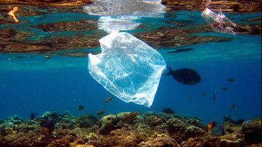 Muovi verolle ja jätteestä bisnestä – EU taisteluun muovivuorten pienentämiseksi