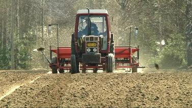 Ennätysmäärä uusia maatiloja siirtyy luomutuotantoon