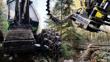 Metsät torjuvat ilmastonmuutosta mutta hakkuut ovat Suomessa nyt ennätystasolla