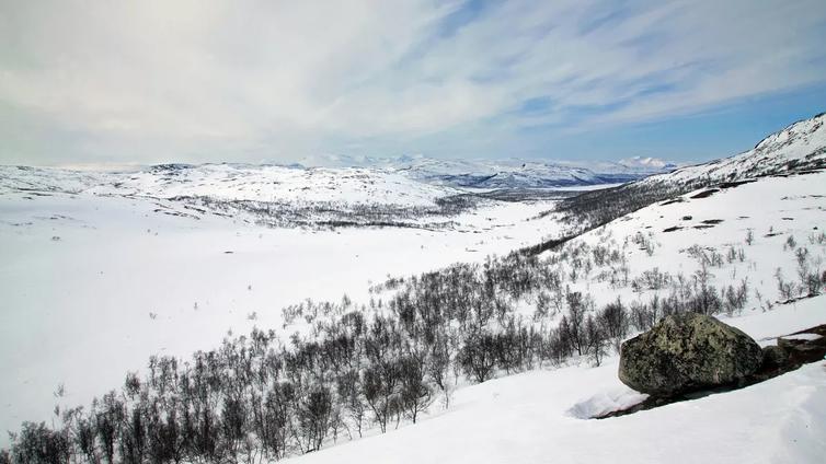 Suomen luonnolla menee entistä huonommin