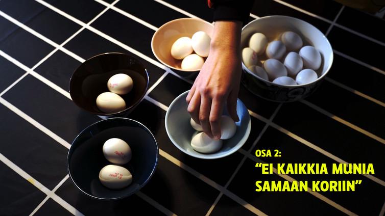 Julia Thurén: Sijoittajan ei kannata laittaa kaikkia munia samaan koriin