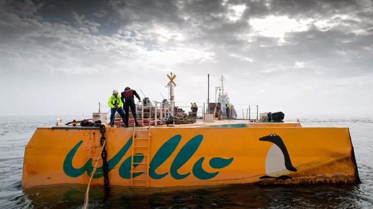 Uusi suomalainen keksintö muuttaa aallot sähköksi