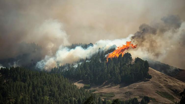 Gran Canarian maastopalosta tulossa ympäristökatastrofi