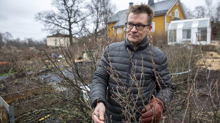 Leuto talvisää saa kasvitkin sekoamaan vuodenajasta