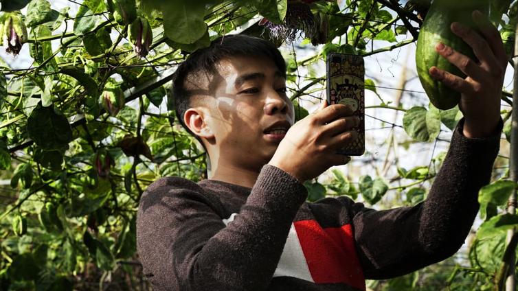 Kiinalaiset maanviljelijät ovat suosittuja somepersoonia