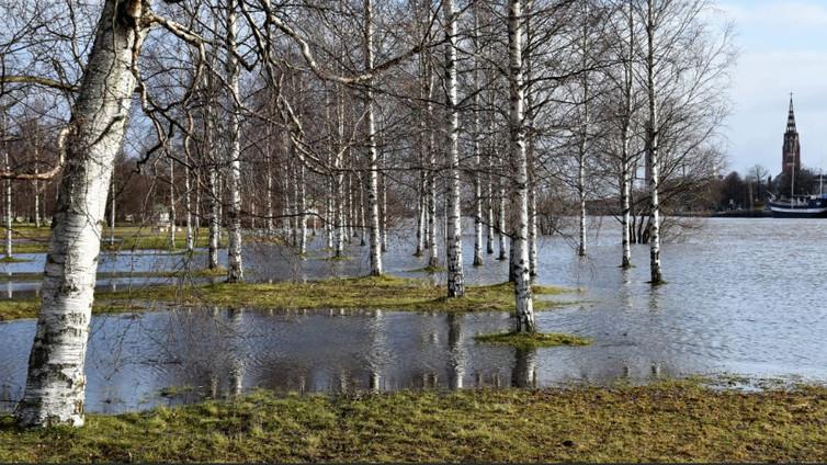 Järvivedet ovat harvinaisen korkealla ja joet virtaavat valtoimenaan