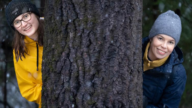 Ilmasto-Jenni: Voiko puita istuttamalla oikeasti hillitä ilmastonmuutosta?