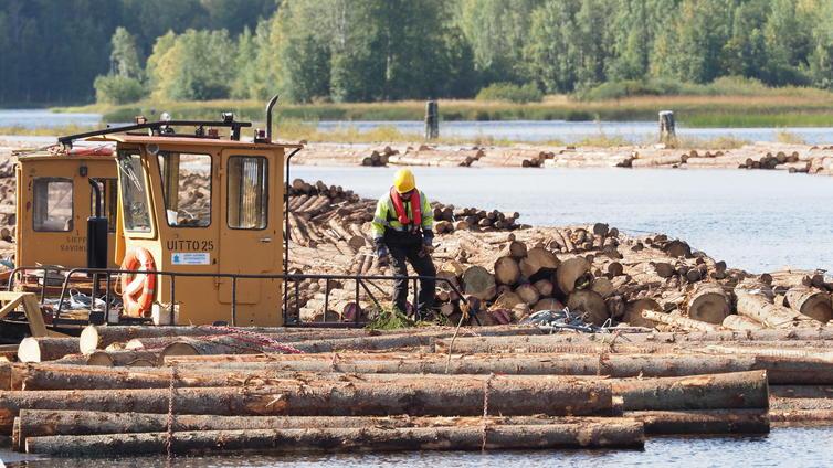 Uitto on edullinen ja ekologinen kuljetusmuoto puulle