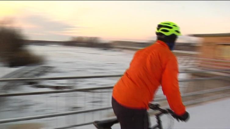 Kansalaisaloitteiden kirjo ulottuu työmatkapyöräilystä suomenpystykorvan pentuihin