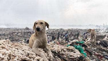 Keniassa pelätään, että maasta tulee muiden muoviroskan kaatopaikka