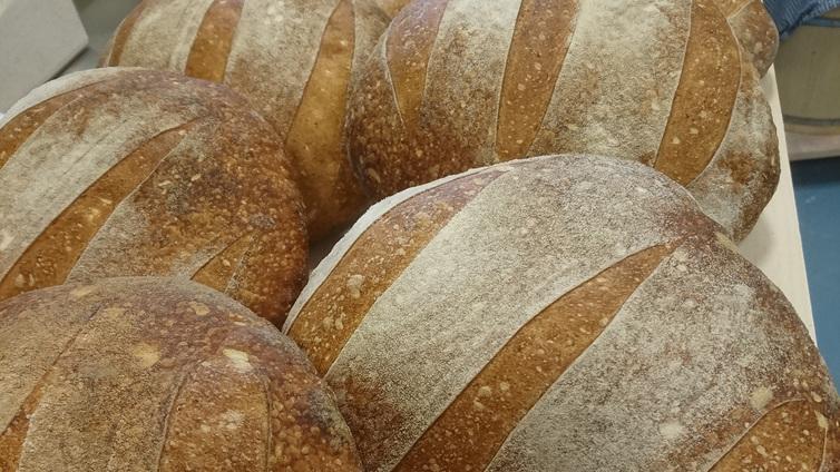 Palkittu artesaanileipuri tekee vuodessa 20 000 leipää