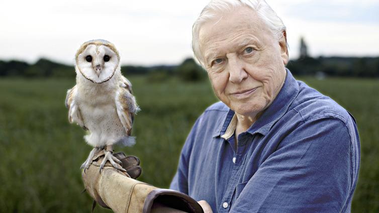 Legendaarinen luontodokumentaristi näyttää, miten luonto on huvennut 90 vuodessa