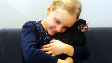 Koulukana Töyhtö opettaa empatiaa