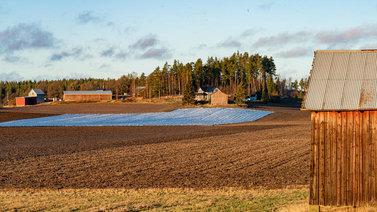 Ilmaston lämpeneminen toi kasvitaudit ja tuholaiset pelloille