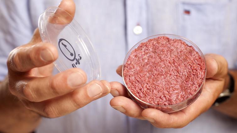 Tulevaisuuden naudanlihapihvi kasvaa navetan sijaan laboratoriomaljassa