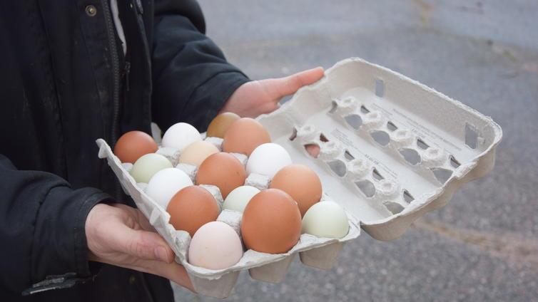 Suomalaiset söivät viime vuonna ennätysmäärän kananmunia