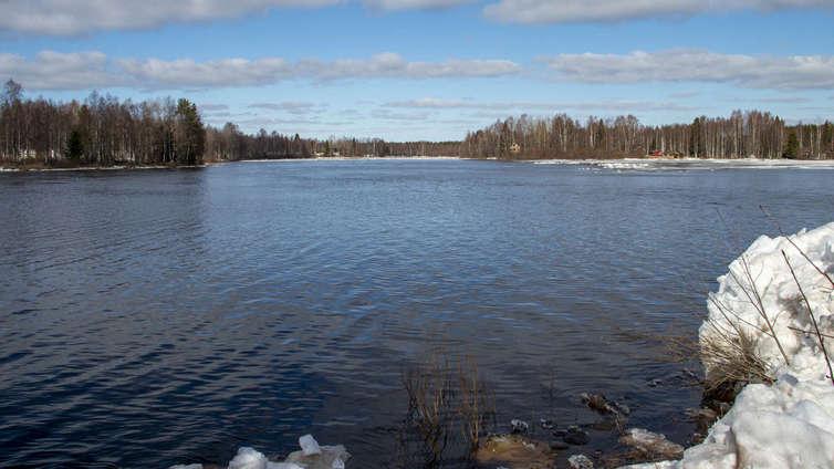 Kevät aloittaa vilkkaan elämän järvessä