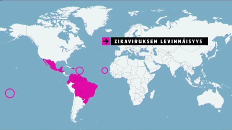 Zikavirus johti WHO:n hätäkokoukseen ja kansainväliseen hätätilaan