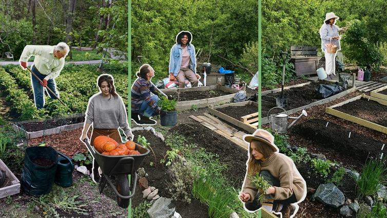 Suomalaiset ovat innostuneet hyötykasvien viljelystä